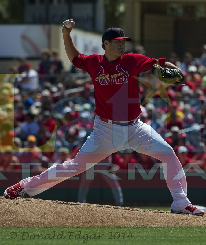 cardinals vs braves - photo #9