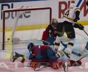 3 Bruins Panthers