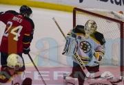7 Bruins Panthers
