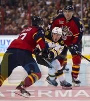8 Bruins Panthers