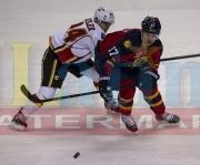 10 Calgary Panthers