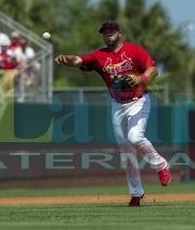3 Twins Cardinals