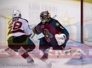 10 Devils Panthers