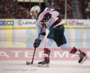 5 Devils Panthers