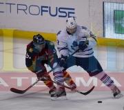 16 Toronto Panthers