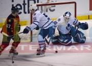 9 Toronto Panthers