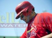 5 National Cardinals